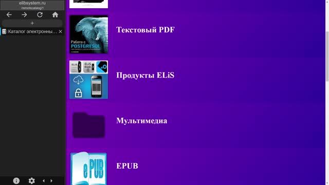 Появился каталог библиотек ELiS, повышающий видимость ресурсов для поисковых систем